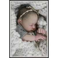 Annaliese Preemie  Kit sculpted and produced by Dawn McLeod  PRE ORDER
