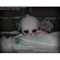 ELARA ALIEN BABY KIT SCULPTED BY JADE WARNER SNEAK PEEK
